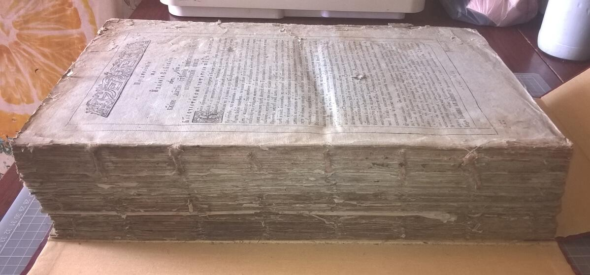 Екатерининская Библия